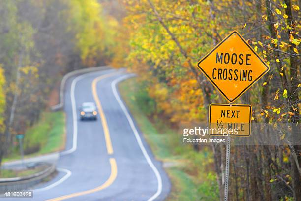Vermont fall foliage moose crossing traffic sign West Jay