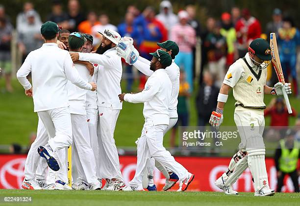 Vernon Philander of South Africa celebrates after taking the wicket of David Warner of Australia during day one of the Second Test match between...