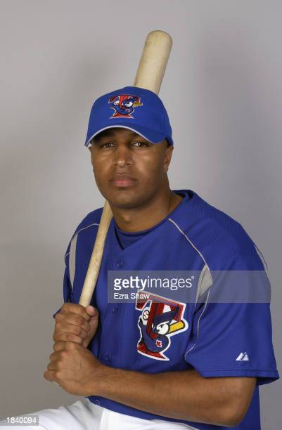 Vernon Wells of the Toronto Blue Jays poses for a portrait during the Blue Jays' spring training Media Day on February 26 2003 in Dunedin Florida