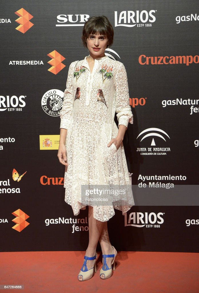 Malaga Film Festival   Presentation Cocktail in Madrid