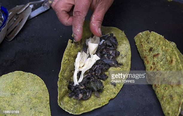 Veronica Mendoza places huitlacoche and cheese to make quesadillas with spinach and wheat bran tortillas at her restaurant in Mexico City on January...