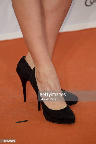 Veronica Sanchez attends Jose Maria Forque awards photocall at Canal theatre on January 22 2013 in Madrid Spain