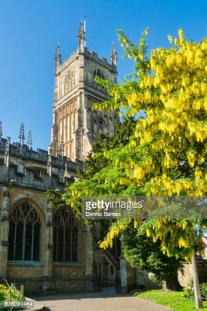 Vertical, Cirencester; Parish Church, St John Baptist, Cotswolds, Laburnum flowering, UK
