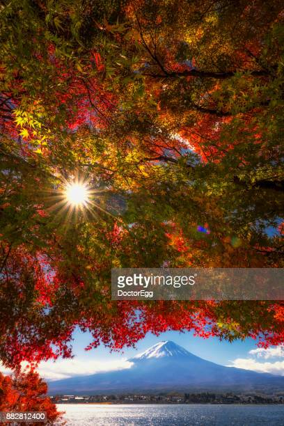 Vertical Fuji Mountain with Colourful Maple Tree with Pleasure Tourist Boat at Kawaguchiko Lake in Autumn