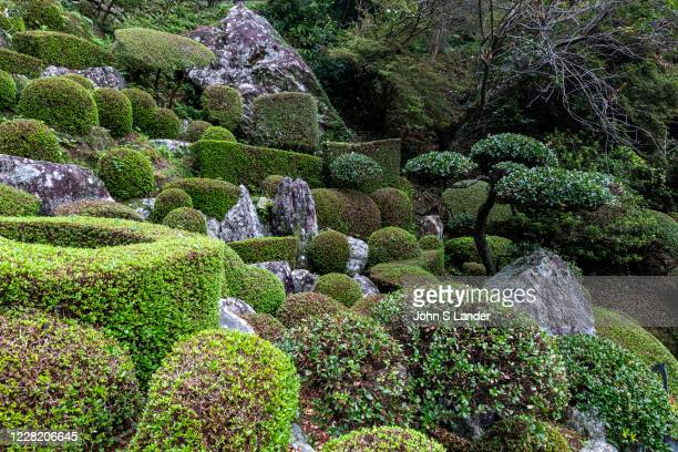Vertical Garden at Konomineji - Konomineji, Temple 27 on the Shikoku Pilgrimage is situated a long day's walk - about 28 kilometers - from the...