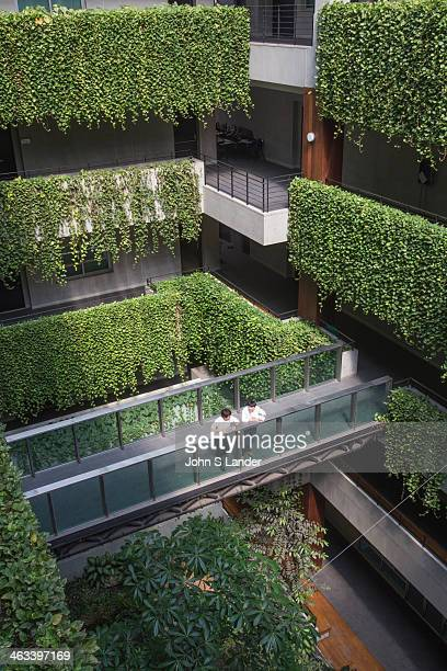 Vertical garden green wall at Kasetsart University Faculty of Economics Fans of vertical gardens or green walls say governments should provide...