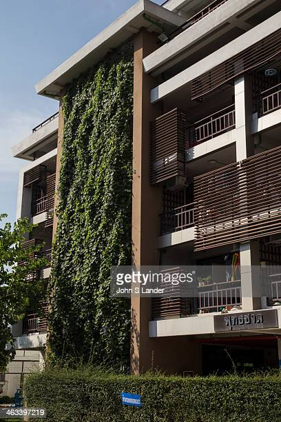 Vertical garden / green wall at Kasetsart Universitys women's dormitory Fans of vertical gardens or 'green walls' say governments should provide...