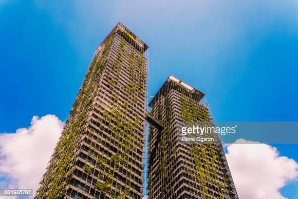 Vertical garden skyscrapers