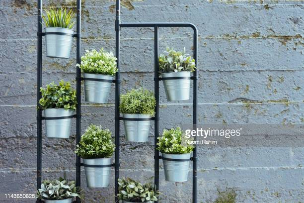 vertical herb garden standing in a confined urban space - hanging basket stock pictures, royalty-free photos & images
