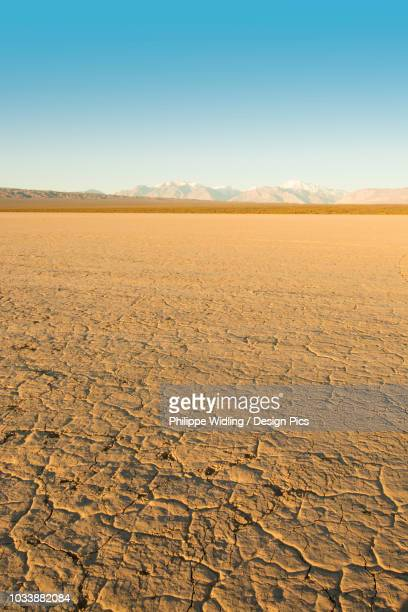 Vertical image of a dry mud-caked lake bed with snow-capped mountains in the distance at dawn