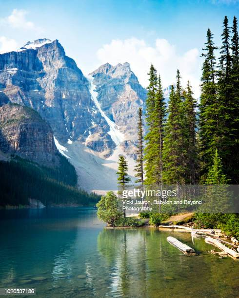 Vertical of Trees, Water, Mountains at Moraine Lake, Alberta, Canada