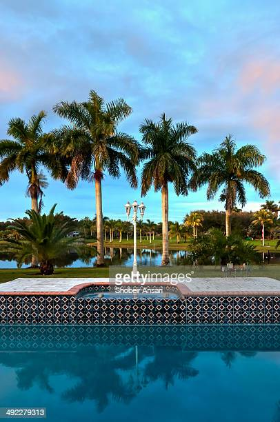 Vertical shot of on outdoor pool with palm trees and lake in background