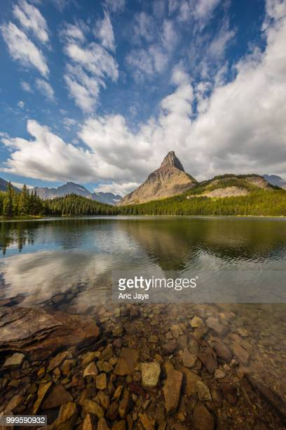Vertical Swiftcurrent Lake