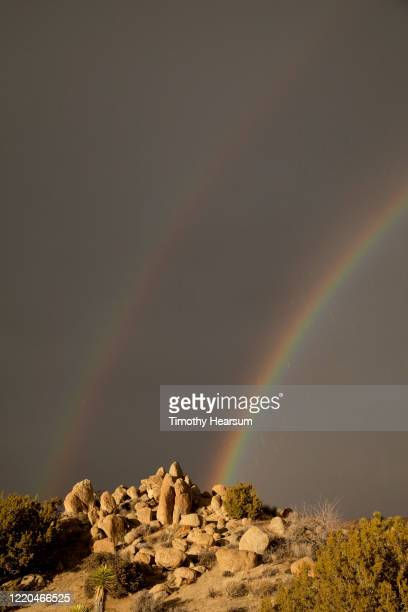 vertical view of boulders with a stormy sky and double rainbow in joshua tree national park - timothy hearsum stockfoto's en -beelden