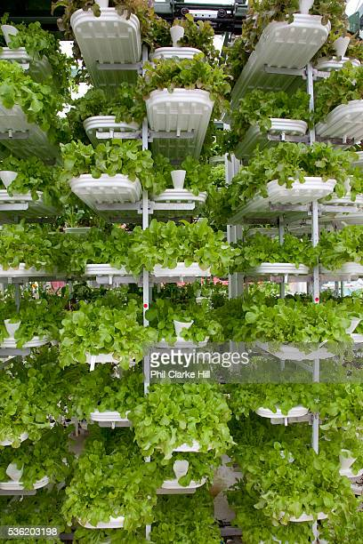 Verticrop is the UK's first and currently only vertical farm the project developed by Kevin Frediani at Paignton Zoo in Devon is a revolutionary way...