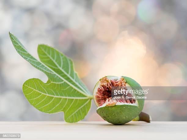 Very freshly harvested ripe fig