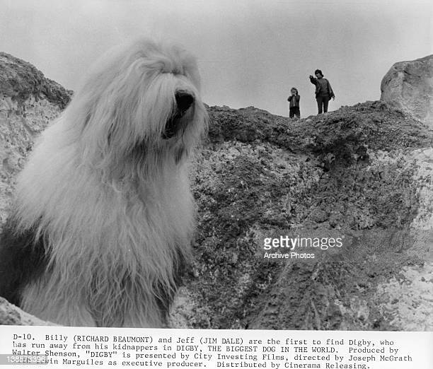 A very large shaggy dog stands below a cliff while two unknown actors stand above looking at him in a scene from the film 'Digby The Biggest Dog In...