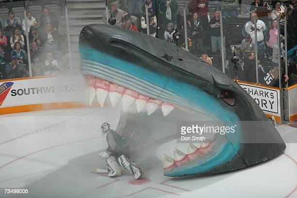 Vesa Toskala of the San Jose Sharks skates through the Sharks head prior to a game against the Chicago Blackhawks on February 3, 2007 at the HP...