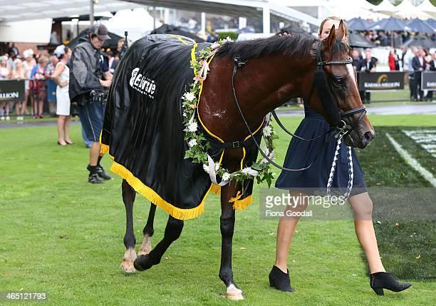 Vespa wins the Karaka Million at Ellerslie Racecourse on January 26 2014 in Auckland New Zealand Karaka Million is New Zealand's richest horse race...