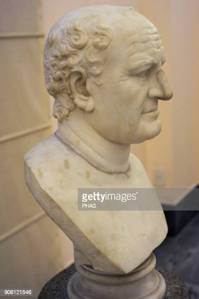 Vespasian Roman emperor Flavian dynasty Modern bust Gallery of the emperors National Archaeological Museum Naples Italy