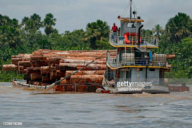 Vessel transports logs on a raft along the Murutipucu River in the municipality of Igarape-Miri in the region of Baixo Tocantins, northeast of Para,...
