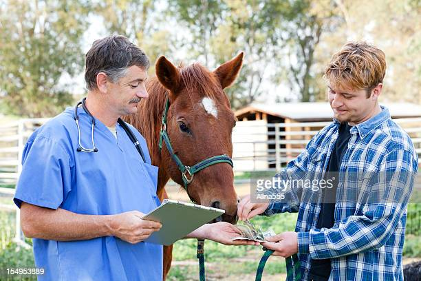 Vet getting paid in cash from the horse owner