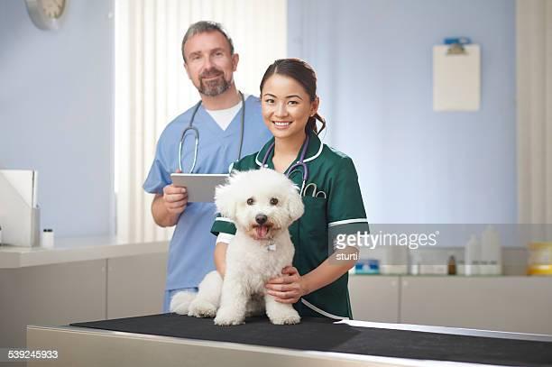 vet nurse and vet