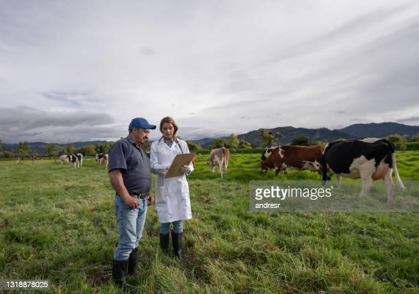 dierenarts die met een landbouwer over zijn koeien bij een veebedrijf spreekt - colombia land stockfoto's en -beelden