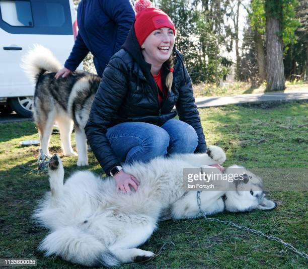 A veteran reacts as she strokes an Alaskan Malamute sled dog during the Phoenix Winter Games in Catterick Garrison on March 04 2019 in Richmond...