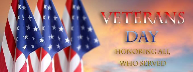 Veterans Day American flags 1009647288