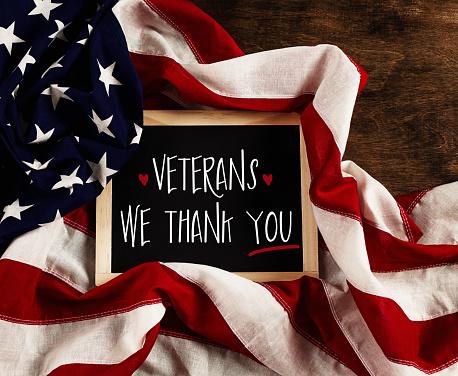 Veterans Day in America 871053666