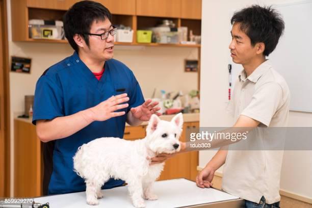 獣医師の動物病院でペットの所有者による治療を議論します。 - 獣医 ストックフォトと画像
