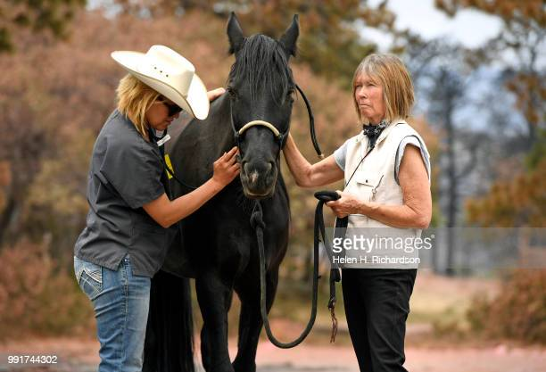 Veterinarian Dr Romy Nicoletta checks out Dancer a horse owned by Kate McCabe right outside of their home in Piney Ridge Ranch on July 4 2018 in La...