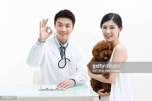 Veterinarian examining a cute poodle