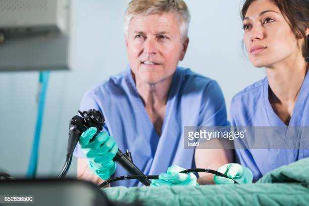 Veterinarians using an endoscope