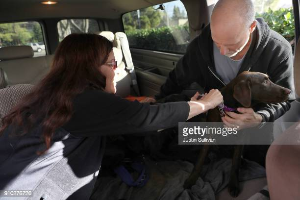 Veternarian technician Sandi Broeland gives a dog a canine influenza immunization at Los Gatos Dog and Cat Hospital on January 25 2018 in Los Gatos...