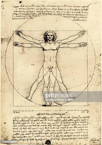 Vetruvian Man by Leonardo da Vinci created c 14801490 The drawing demonstrating proportions of the human body was inspired by the book De...