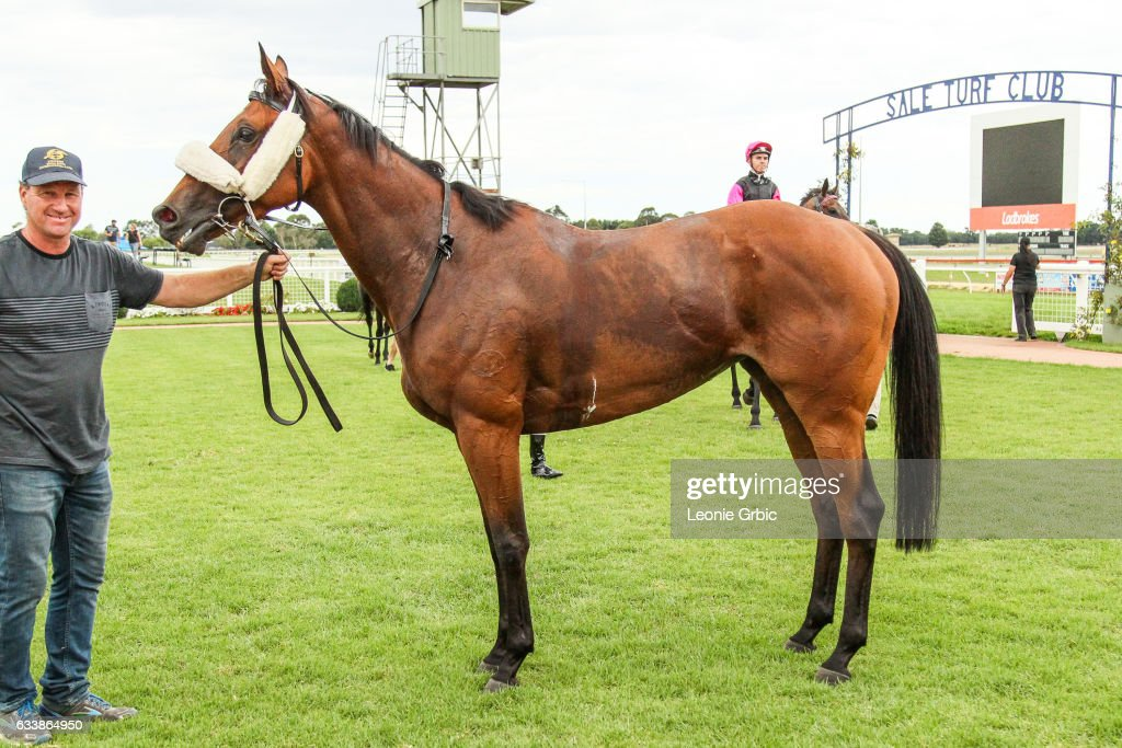 Via Cavour after winning the GBG Concrete & Constructions Grand Hcp Mid Distance Win & You're In at Sale Racecourse on February 05, 2017 in Sale, Australia.