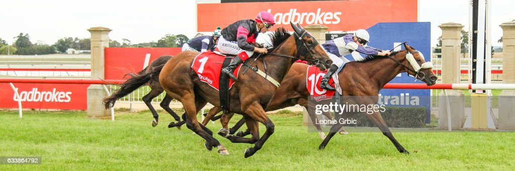 Via Cavour ridden by Jordan Turner wins the GBG Concrete & Constructions Grand Hcp Mid Distance Win & You're In at Sale Racecourse on February 05, 2017 in Sale, Australia.