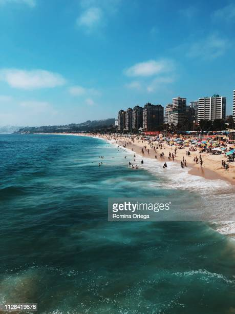 viña del mar - vina del mar stock pictures, royalty-free photos & images