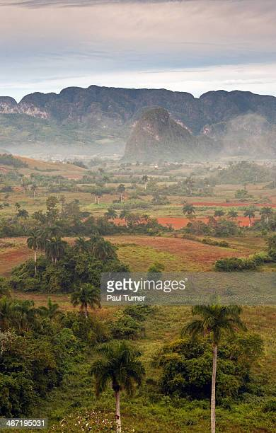 Viñales Valley Fog I