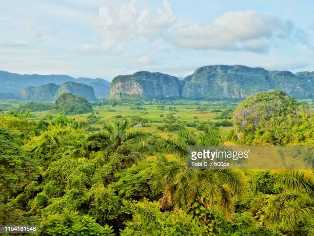 viñales valley in cuba - valley stock pictures, royalty-free photos & images