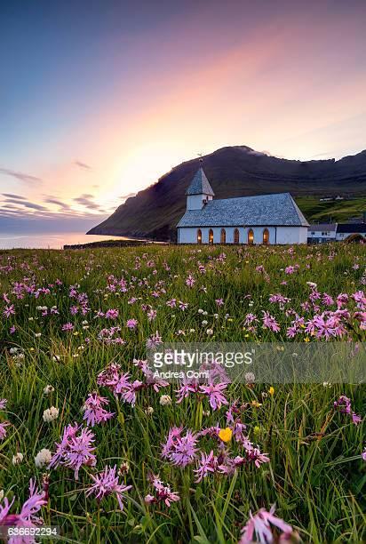 Viðareiði curch at sunset. Flowers in foreground. Viðareiði, Faroe islands, Europe.
