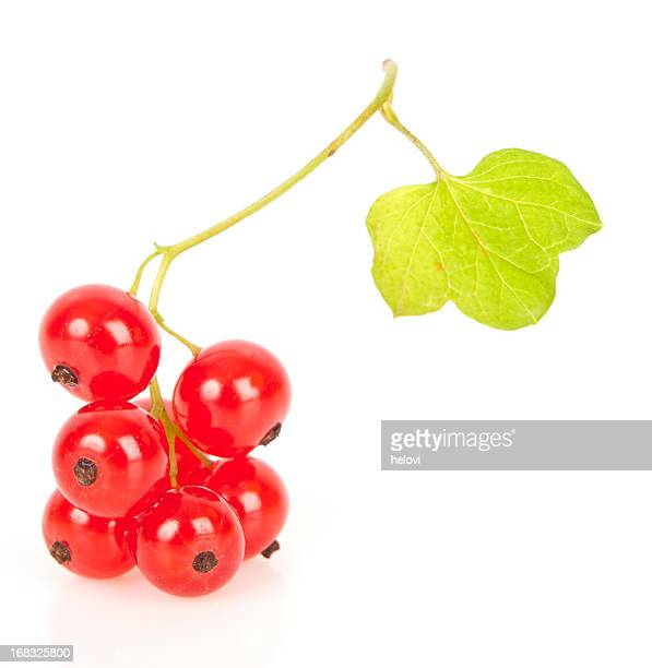 Vibrant cluster of red currants and leaf on white background
