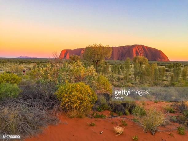 vibrant colours of uluru australia at sunrise - uluru stock photos and pictures