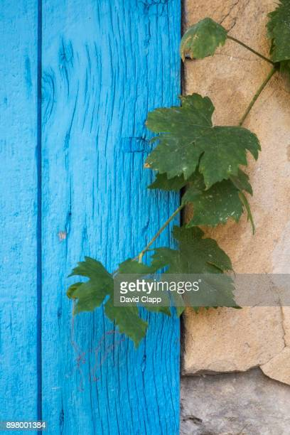 A vibrant doorway in Moustiers-Sainte-Marie
