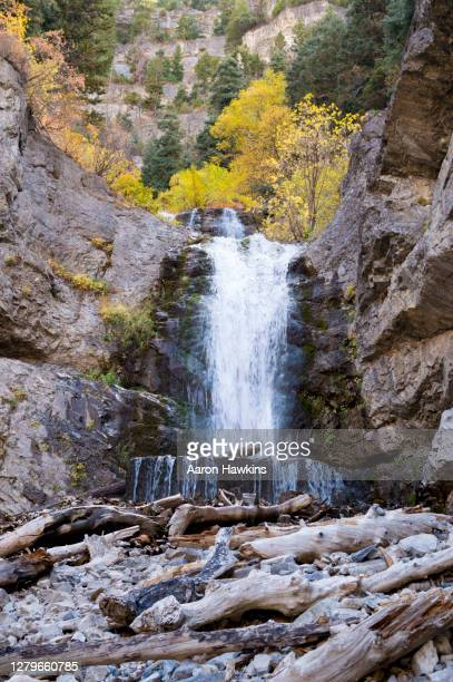 vibrant fall colors surrounding the upper falls waterfall in provo canyon utah - provo stock pictures, royalty-free photos & images