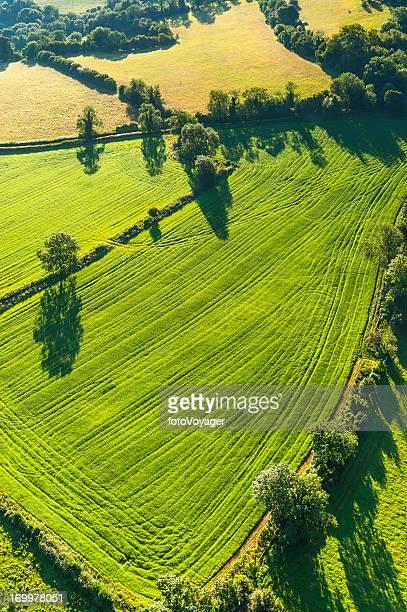 patchwork éclatant vert pâturage sur le paysage pittoresque de la campagne de champs Photographie aérienne