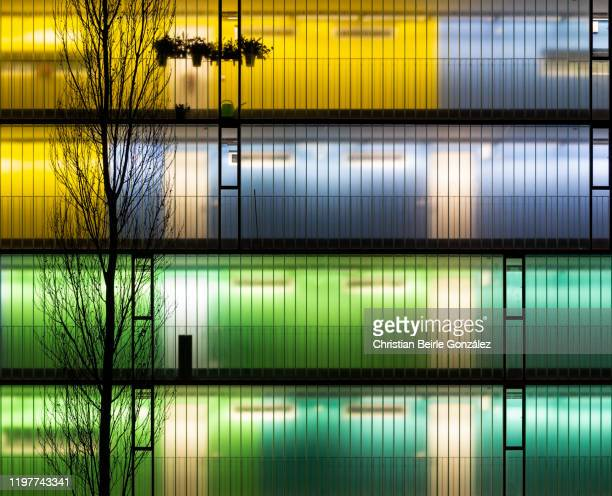 vibrant illuminated corridor of residential appartments in munich - innsbrucker ring, germany. - christian beirle stock pictures, royalty-free photos & images