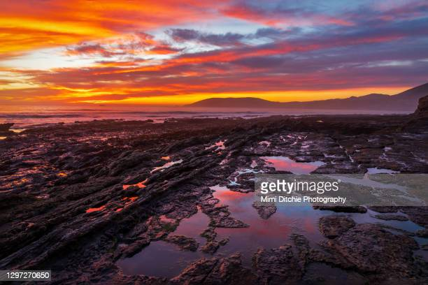 vibrant shell beach sunset at low tide - pismo beach stock pictures, royalty-free photos & images